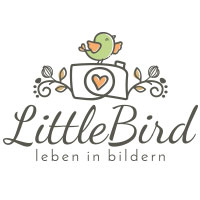 Videomarketing in Bayreuth - Logo Little Brid